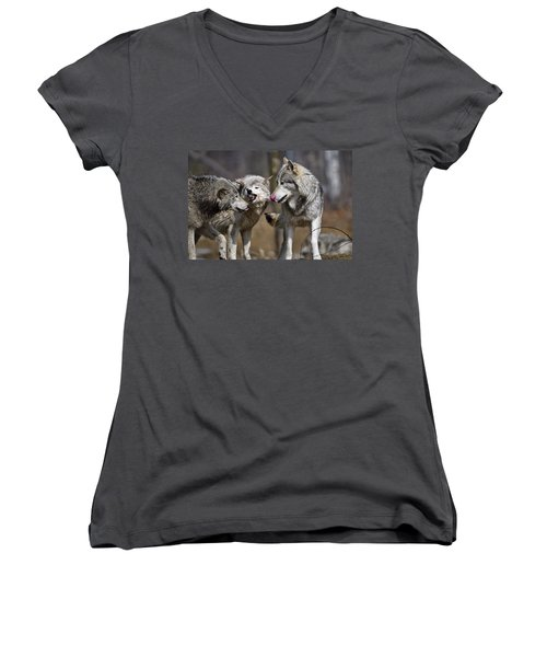 Women's V-Neck T-Shirt (Junior Cut) featuring the photograph Buddy You Are Just Not Listening by Michael Cummings