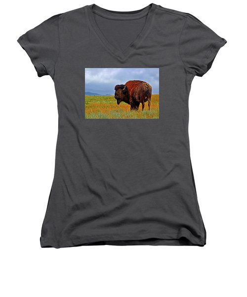 Women's V-Neck T-Shirt (Junior Cut) featuring the photograph Buffalo 006 by George Bostian