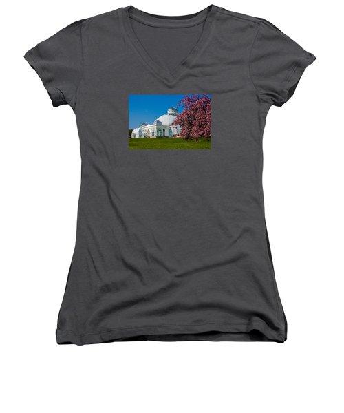 Buffalo Botanical Gardens North Lawns Women's V-Neck T-Shirt (Junior Cut) by Don Nieman