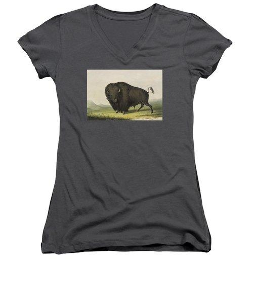 Buffalo Bull Grazing 1845 Women's V-Neck (Athletic Fit)