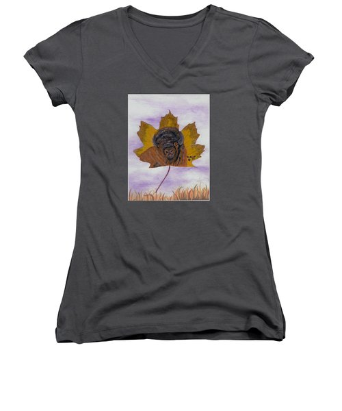 Buffalo Profile Women's V-Neck T-Shirt