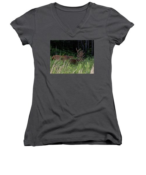 Bull Elk Grazing Women's V-Neck (Athletic Fit)