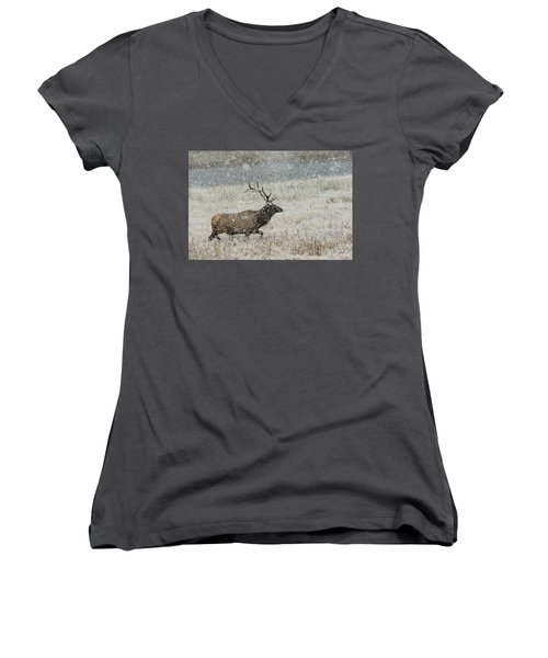 Bull Elk With Snow Women's V-Neck (Athletic Fit)