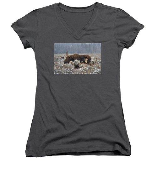 Women's V-Neck T-Shirt (Junior Cut) featuring the photograph Bull Moose In The Snowy Meadow by Adam Jewell