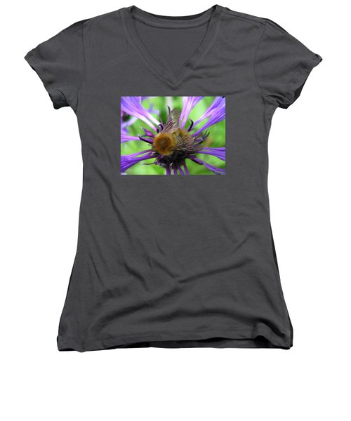 Bumblebee In Blue Women's V-Neck (Athletic Fit)