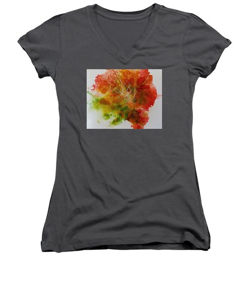 Burst Of Nature Women's V-Neck T-Shirt (Junior Cut) by Carolyn Rosenberger