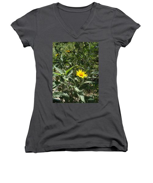 Burst Of Sun Flower Women's V-Neck (Athletic Fit)