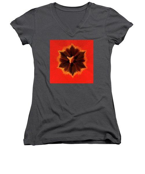 Bursting Women's V-Neck T-Shirt (Junior Cut) by Terri Harper
