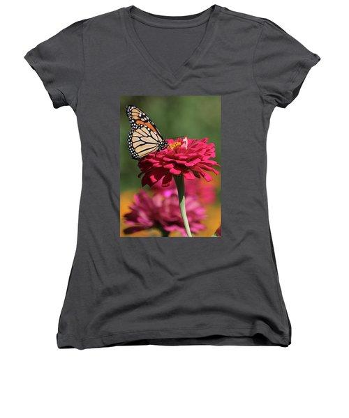 Butterfly On Zinnia Women's V-Neck