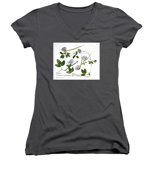 Butterfly Pea Women's V-Neck (Athletic Fit)