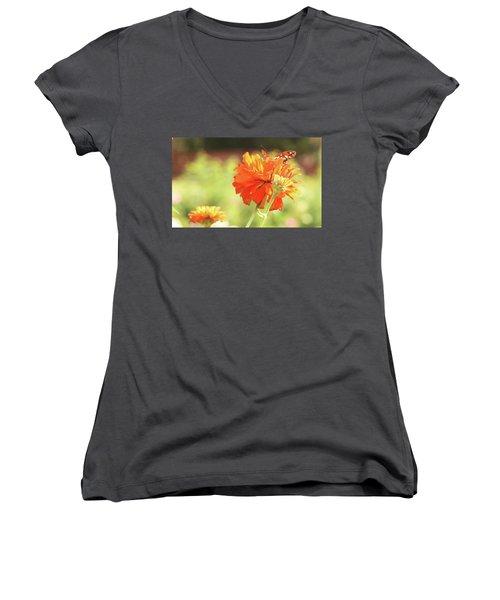 Butterfly Peek-a-boo Women's V-Neck T-Shirt