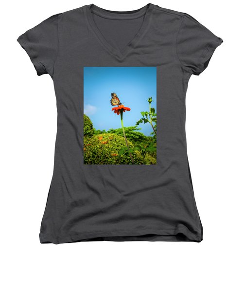 Butterfly Perch Women's V-Neck (Athletic Fit)