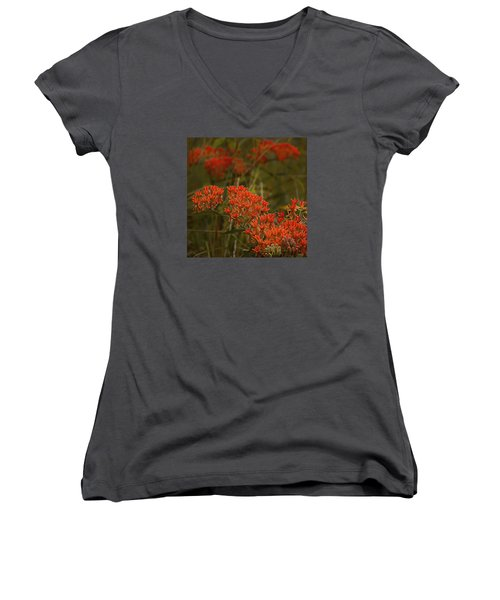 Butterfly Weed Asclepias Tuberosa Women's V-Neck T-Shirt (Junior Cut) by Bellesouth Studio