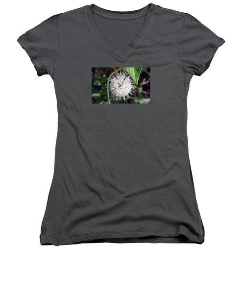 Buttonbush Women's V-Neck T-Shirt