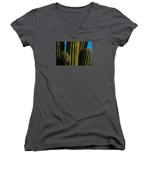 Cacti  Women's V-Neck (Athletic Fit)