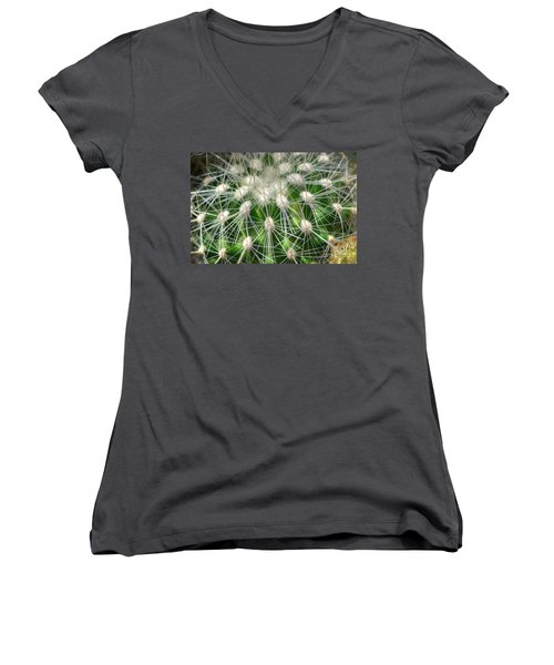 Women's V-Neck T-Shirt (Junior Cut) featuring the photograph Cactus 1 by Jim and Emily Bush