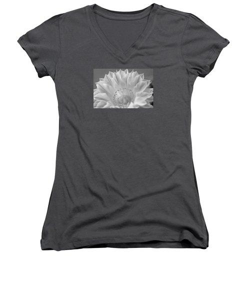 Cactus Bloom Burst Women's V-Neck T-Shirt (Junior Cut) by Shelly Gunderson