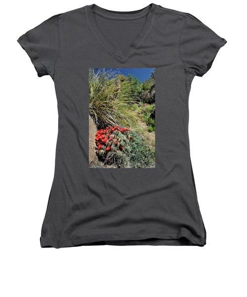 Crimson Barrel Cactus Women's V-Neck