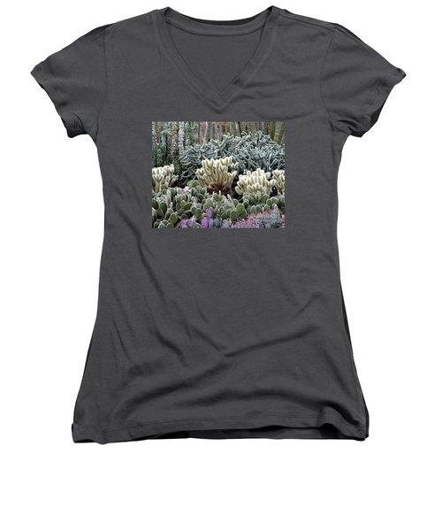 Cactus Field Women's V-Neck T-Shirt (Junior Cut) by Rebecca Margraf