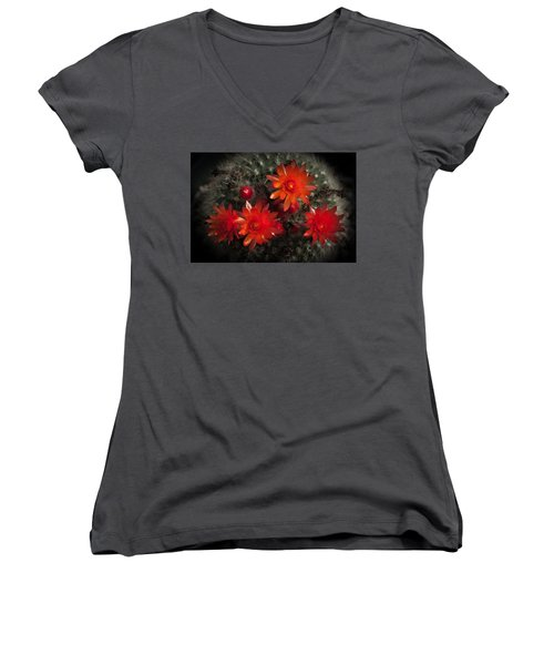 Women's V-Neck T-Shirt (Junior Cut) featuring the photograph Cactus Red Flowers by Catherine Lau