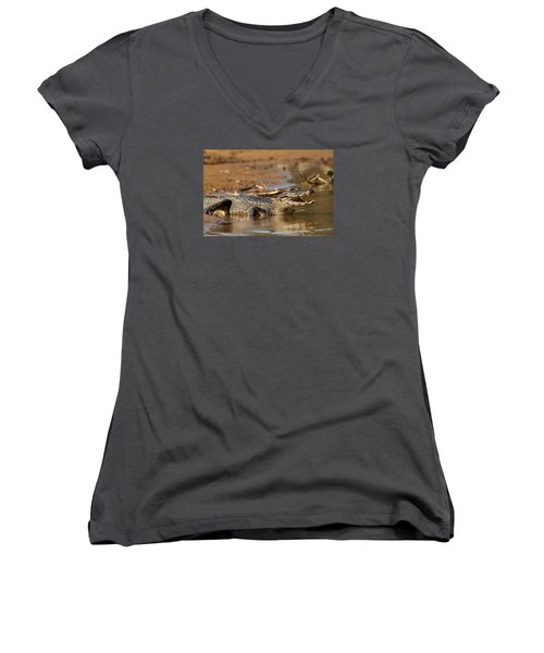 Caiman With Open Mouth Women's V-Neck T-Shirt (Junior Cut) by Aivar Mikko