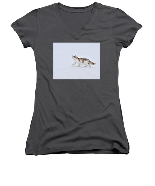 Calico Huntress Women's V-Neck (Athletic Fit)