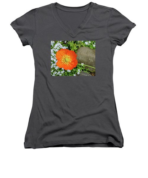 California Poppy Rock Garden Women's V-Neck T-Shirt (Junior Cut) by Shirley Heyn