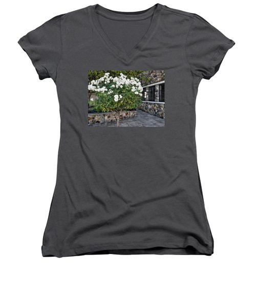 Camellia Blossoms Women's V-Neck T-Shirt