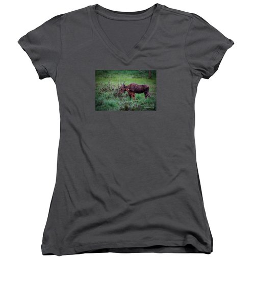 Can You Keep A Secret Women's V-Neck T-Shirt