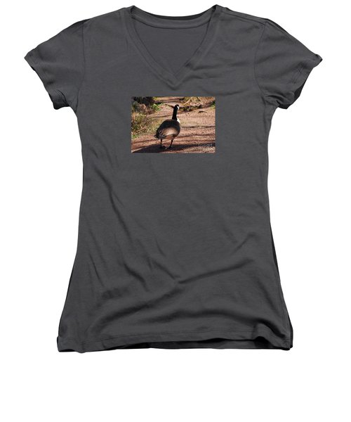 Women's V-Neck T-Shirt (Junior Cut) featuring the photograph Canada Goose 20120406_63a by Tina Hopkins