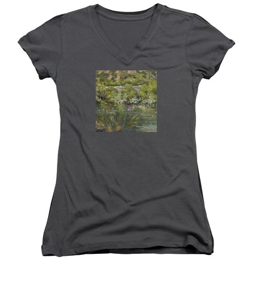 Canadian Geese La River Women's V-Neck T-Shirt (Junior Cut) by Jane Thorpe