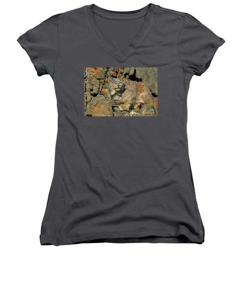 Women's V-Neck T-Shirt (Junior Cut) featuring the photograph Canadian Lynx On Lichen-covered Cliff Endangered Species by Dave Welling