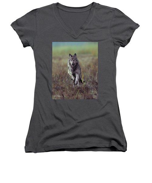 Canis Lupus Women's V-Neck T-Shirt (Junior Cut) by Tim Fitzharris