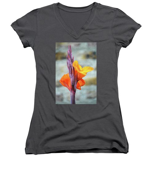 Women's V-Neck T-Shirt (Junior Cut) featuring the photograph Cannas by Terence Davis