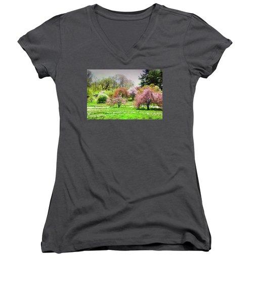 Women's V-Neck T-Shirt (Junior Cut) featuring the photograph Garden Canvas  by Diana Angstadt