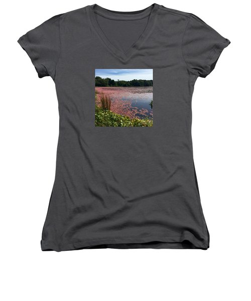 Cape Cod Cranberry Bog Women's V-Neck T-Shirt