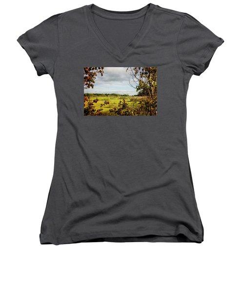 Cape Cod Marsh 3 Women's V-Neck T-Shirt
