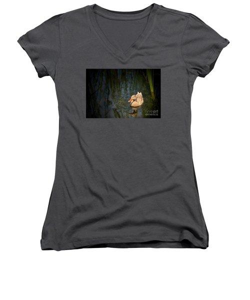 Caramel Mallard Women's V-Neck T-Shirt