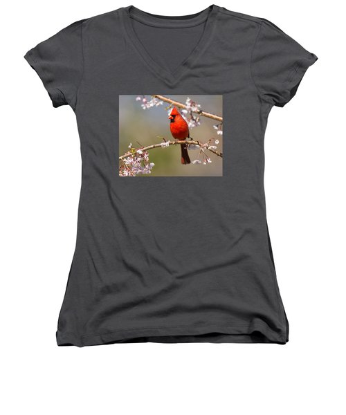 Women's V-Neck featuring the photograph Cardinal In Cherry by Angel Cher
