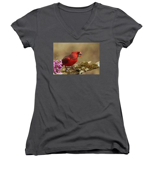 Cardinal In Spring Women's V-Neck