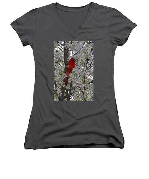 Cardinal In White Blossoms Women's V-Neck T-Shirt (Junior Cut) by Barbara Bowen