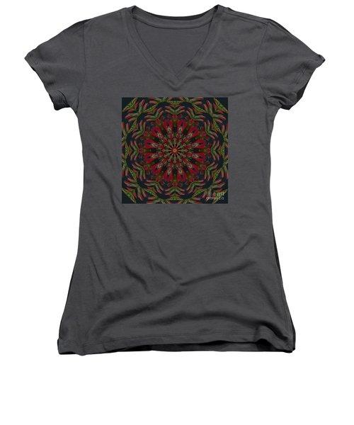 Cardinal Kaleidoscope Women's V-Neck T-Shirt (Junior Cut) by Judy Wolinsky