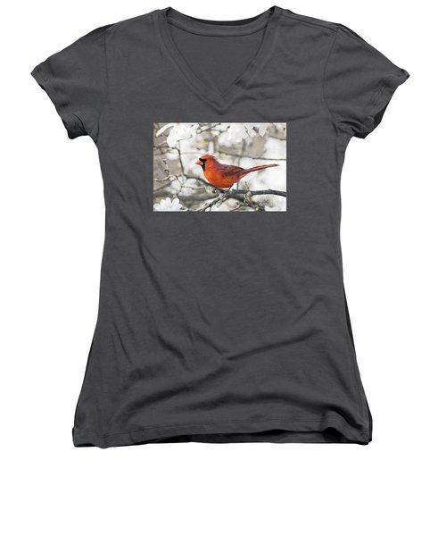 Women's V-Neck T-Shirt (Junior Cut) featuring the photograph Cardinal Spring - D009909-a by Daniel Dempster