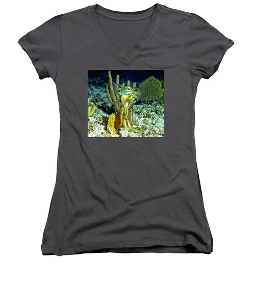 Caribbean Squid At Night - Alien Of The Deep Women's V-Neck T-Shirt (Junior Cut) by Amy McDaniel