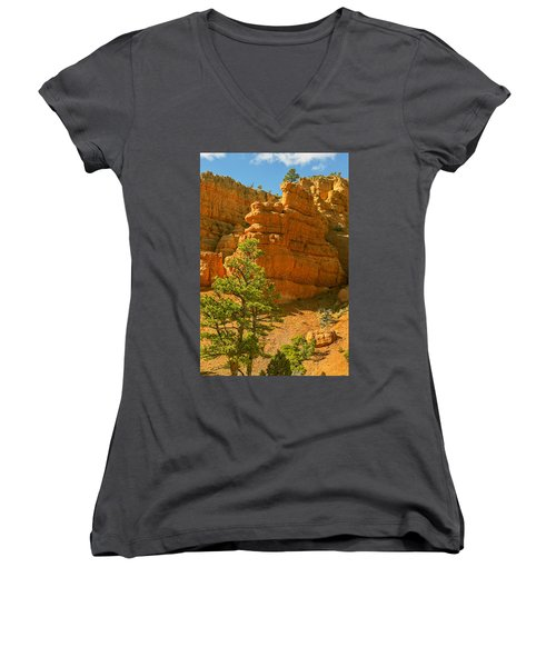 Casto Canyon Women's V-Neck T-Shirt (Junior Cut) by Peter J Sucy