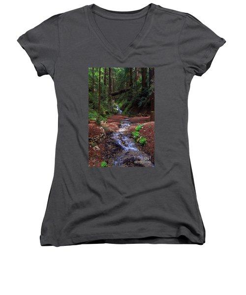 Castro Canyon In Big Sur Women's V-Neck T-Shirt