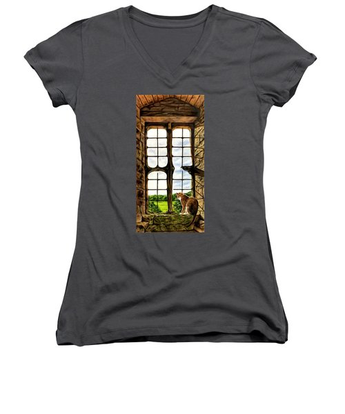 Cat In The Castle Window Women's V-Neck T-Shirt