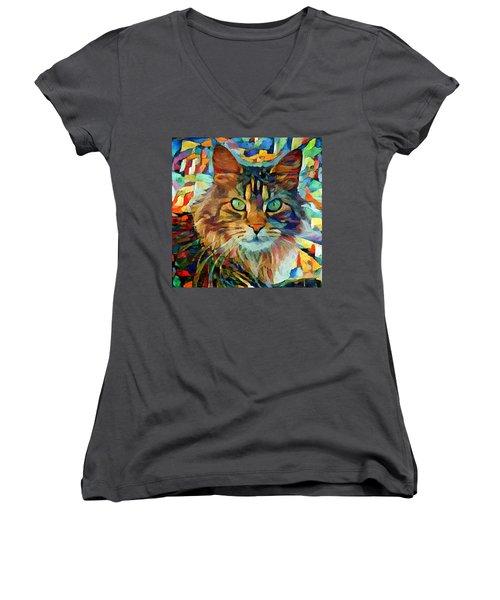 Cat On Colors Women's V-Neck T-Shirt