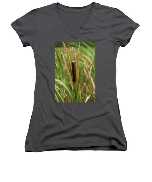 Women's V-Neck T-Shirt (Junior Cut) featuring the photograph Cat Tail by Paul Freidlund
