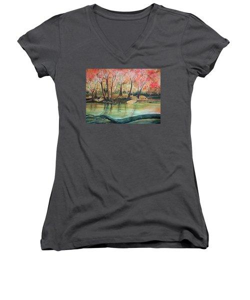 Cataract Women's V-Neck T-Shirt
